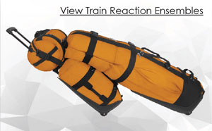 Train Reaction Ensembles